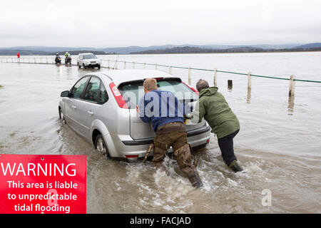 A motorist stuck in flood waters on the road at Storth on the Kent Estuary in Cumbria, UK, during the January 2014 - Stock Photo