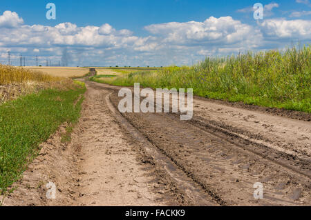 earth road fields countryside - photo #2