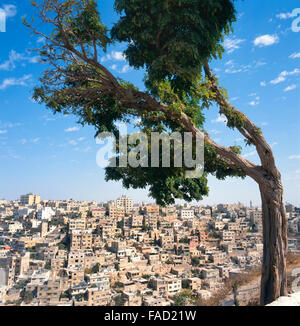 View at Amman in Jordan. Seen from the citadel - Stock Photo