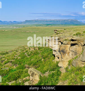 first peoples buffalo jump state park (ulm pishkun) and square butte near ulm, montana - Stock Photo