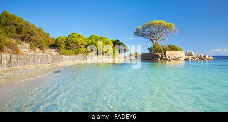 Palombaggia Beach, Porto-Vecchio, East Coast of Corsica Island, France