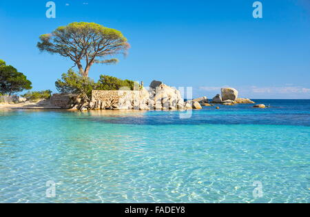 Palombaggia Beach, Porto-Vecchio, East Coast of Corsica Island, France - Stock Photo
