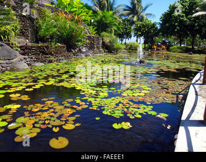 Jardins de pa 39 ofa 39 i in papeete french polynesia stock for Ornamental fish garden ponds
