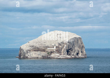 Bass Rock, volcanic rocks and gannet colony in the Firth of Forth at North Berwick, East Lothian, Scotland, United - Stock Photo