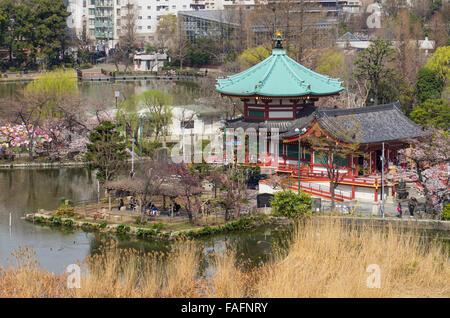 Bentendo with Shinobazu Pond at Ueno Park, Tokyo during cherry blossom season - Stock Photo