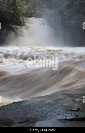 Cauldron Falls, West Burton in Wensleydale in full flow. - Stock Photo