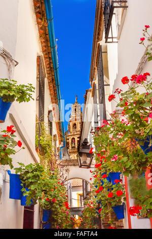 Flower Street Calleja de las Flores Old Torre del Alminar Bell Tower Mezquita Cordoba Andalusia Spain.  Mezquita created in 785 Stock Photo