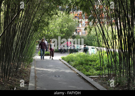 A bamboo grove on the Promenade Plantee, Paris. (A disused railway line turned into a landscaped walking route.) - Stock Photo