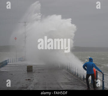 Dorset, UK. 30th Dec, 2015. Taking risk as this wave watcher at The Stone Pier in Weymouth Dorset was getting close - Stock Photo