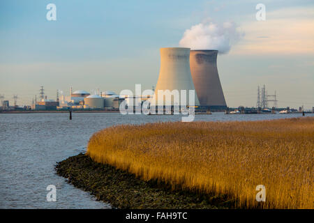 The Belgian Doel Nuclear Power Station, near Antwerp, on the Scheldt, nuclear power plant with 4 power plant units - Stock Photo
