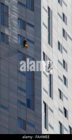 Abseiling window cleaners hard at work on a building in the East End of London UK - Stock Photo