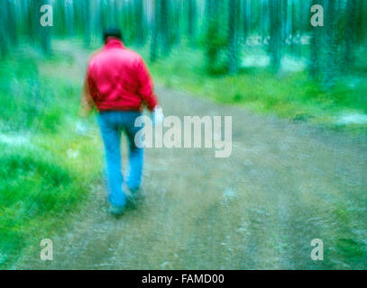 Walking alone in the forest - Stock Photo