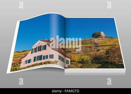 House Fliegenwedel is a Baroque winegrowers House, Radebeul near Dresden, administrative district Meissen, Saxony, - Stock Photo