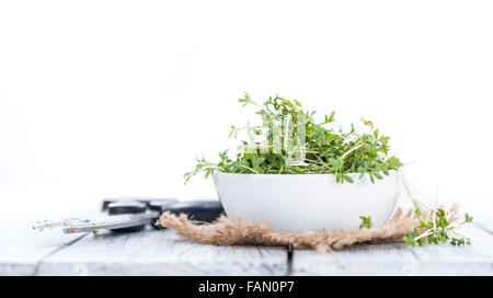 Garden Cress (close-up shot) isolated on white background - Stock Photo