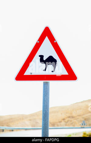 A camel hazard road sign in Israel - Stock Photo