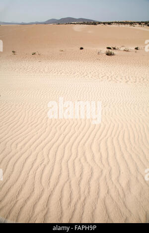 dunes on the island of Fuerteventura - Stock Photo
