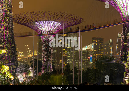 skyway between colourful lit super trees gardens by the bay singapore asia - Garden By The Bay At Night