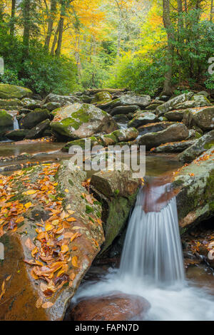 Waterfall along Road Prong viewed from Chimney Tops Trail, Great Smoky Mountains NP, Tennessee USA - Stock Photo
