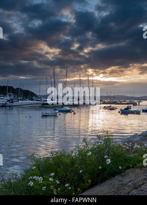 Boats moored in Brixham harbour, Devon, against the setting sun - Stock Photo
