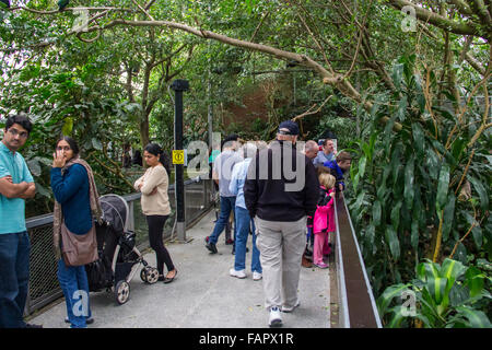 National Aviary in Pittsburgh, PA - Stock Photo