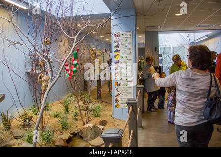 The National Aviary in Pittsburgh, PA - Stock Photo