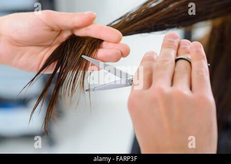 Hair trimming procedure in progress. - Stock Photo