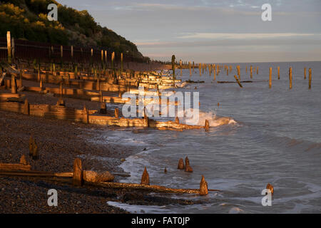 Wooden groins or breakwaters on the North Sea coast, Bawdsey Ferry, Suffolk, UK. - Stock Photo