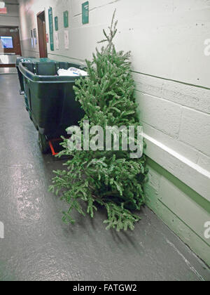 A poor, lonesome, discarded Christmas tree is seen in the trash area of an apartment building in New York on Friday, - Stock Photo