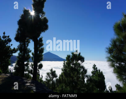 Tenerife, Canary Islands - Mount Teide national park. Chimaque Mirador view (off the TF-24 road). Mount Teide over - Stock Photo