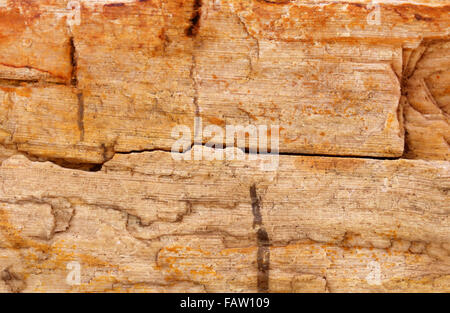 Sedimentary rock as a background - Stock Photo