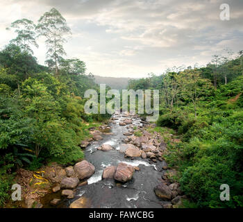 Cloudy weather and river in tropical forest - Stock Photo