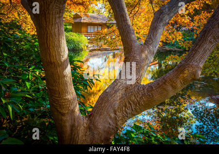 The Fort Worth Japanese Garden is a 7.5-acre Japanese Garden in the Fort Worth (Texas) Botanic Garden - Stock Photo