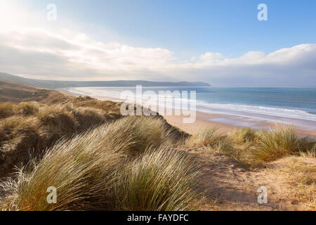 Windswept grass on the sand dunes above Woolacombe beach in North Devon, England - Stock Photo