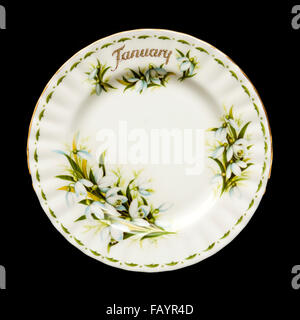 Vintage Royal Albert porcelain 'January' plate (Flowers of the Month series) from 1970, featuring lovely hand painted - Stock Photo