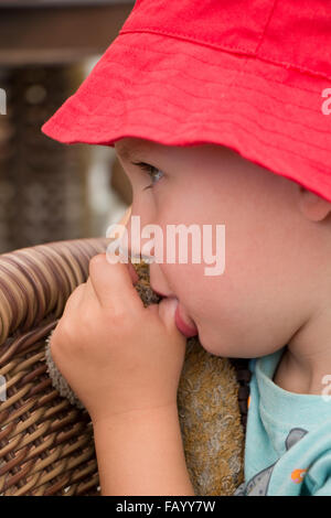 Young boy sucking his thumb Stock Photo