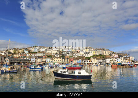 Boats moored in Brixham Harbour, Brixham, Devon, on a glorious summer's day; the town rises in the background - Stock Photo