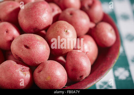 whole, fresh, baby red potatoes - Stock Photo