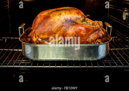 Roasted turkey for Thanksgiving in oven - Stock Photo