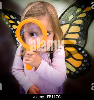 Girl (2-3) wearing butterfly wings looking through magnifying glass - Stock Photo