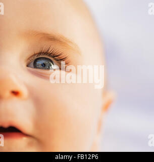 Close-of baby boy's (6-11 months) blue eye - Stock Photo