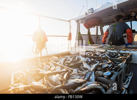 Crates of fish on boat with fisherman standing in background - Stock Photo