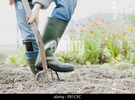 Cropped shot of woman wearing rubber boots digging organic garden with fork - Stock Photo