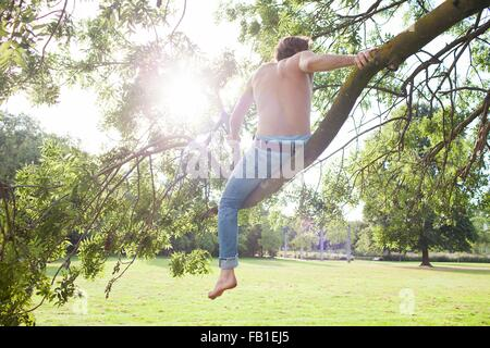 Rear view of young man looking out from tree in park - Stock Photo