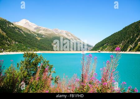 Schlegeis dam with Schlegeis glacier in the distance, Zillertal High Alpine nature park, Hochgebirgs Naturpark, - Stock Photo