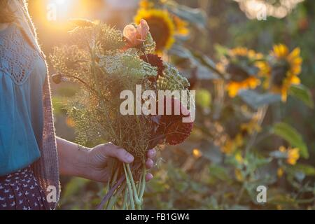 Cropped view of woman holding fresh flowers and ferns at allotment - Stock Photo