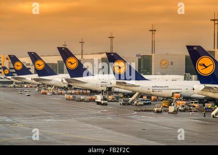 Lufthansa planes at Frankfurt international airport, Frankfurt, Hesse, Germany - Stock Photo