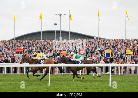 Two horses fly past the crowd towards the finish straight during the weekend of the 2014 Grand National at Aintree - Stock Photo