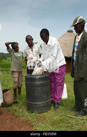 Farmer making liquid fertiliser out cow manure soaked in barrel filled with water. Kenya. - Stock Photo