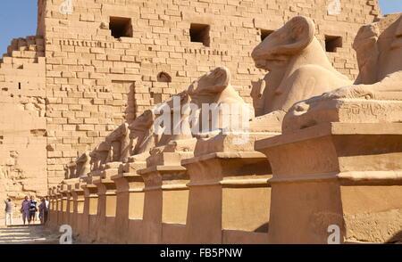 Avenue of Rams in Karnak Temple, Karnak, Egypt - Stock Photo