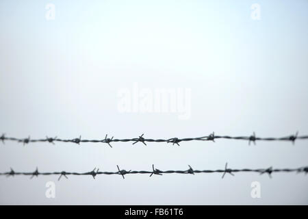 Twin barbed wire - Stock Photo